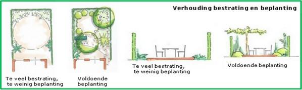 balans bestrating beplanting